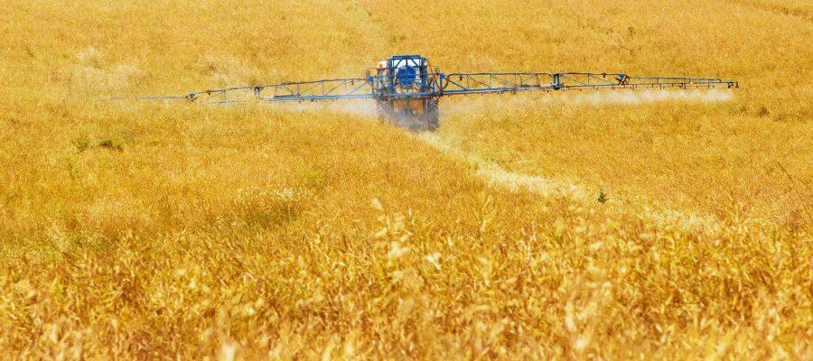 Quelles alternatives aux pesticides ?